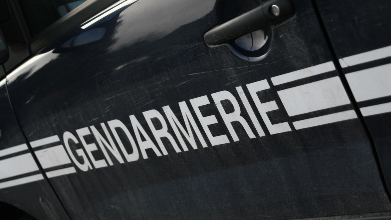 Après enquête, les gendarmes ont arrêté les voleurs.
