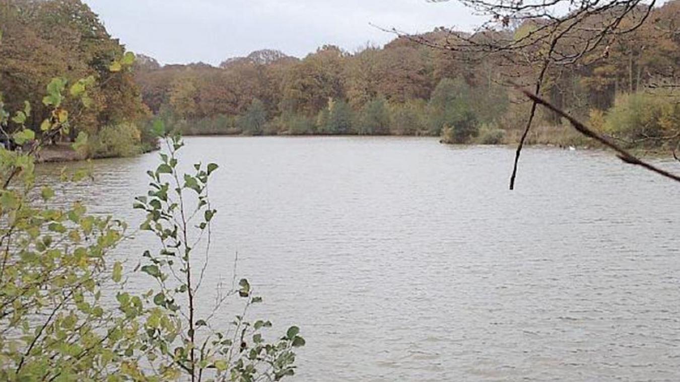 Bientôt un plan d'action pour la préservation des zones humides ?