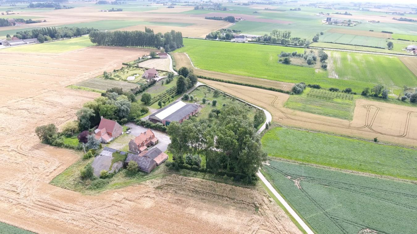 C'est dans la ferme familiale, où Matthieu Reumaux a grandi, que son intérêt pour le lin est né. Une plante qui compose les produits de la marque Qädyp.
