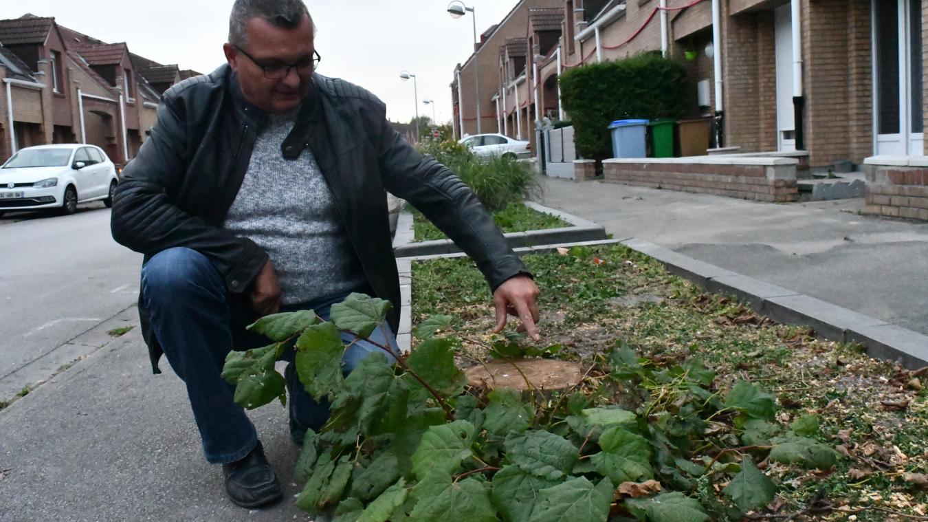 Comme les tilleuls de la rue des Manoirs, Éric Bouton est abattu par la disparition de ces arbres qu'il avait lui-même plantés il y a 28 ans.