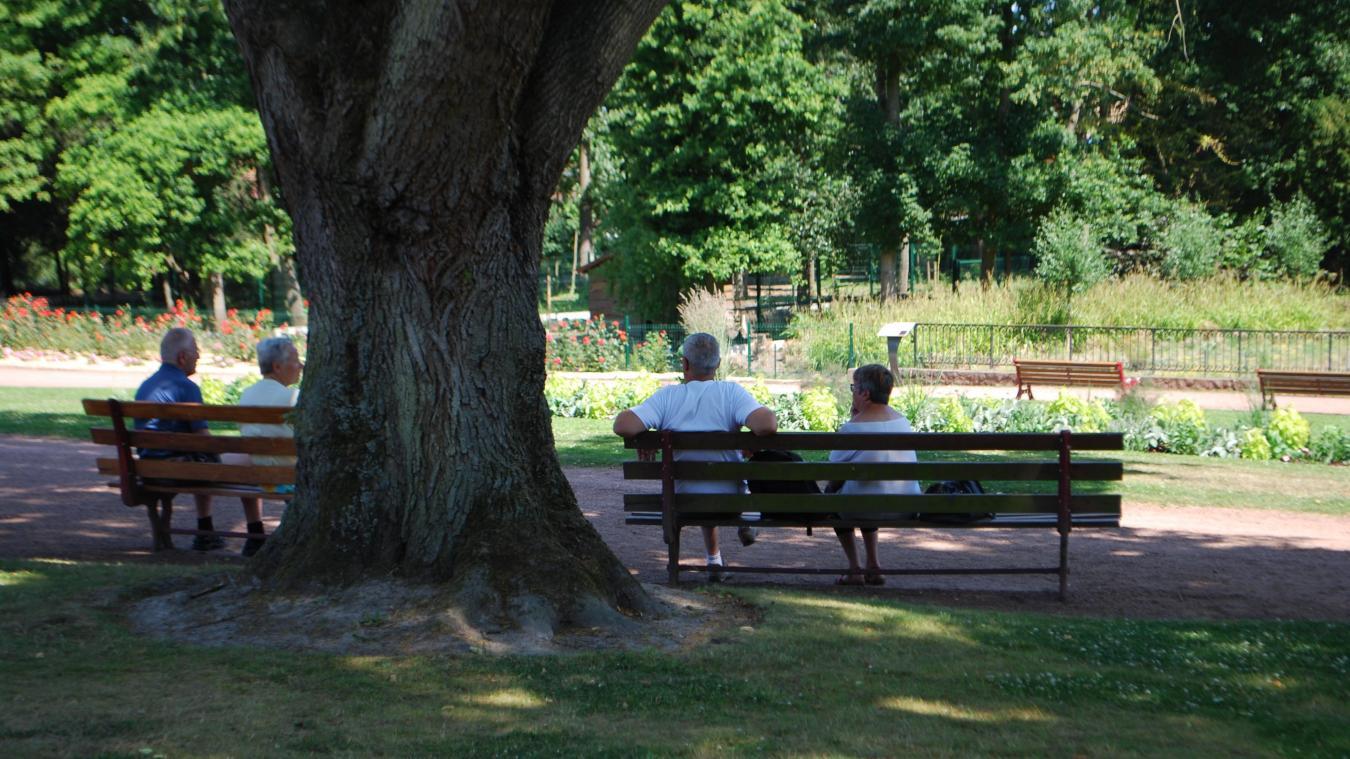 Hazebrouck : on pourra traverser le jardin public les pieds au sec