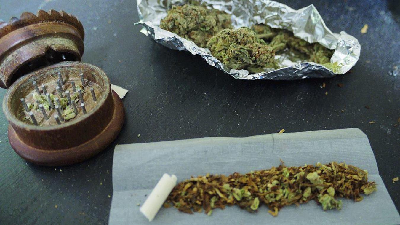 Nieppe : il cultivait du cannabis dans son garage