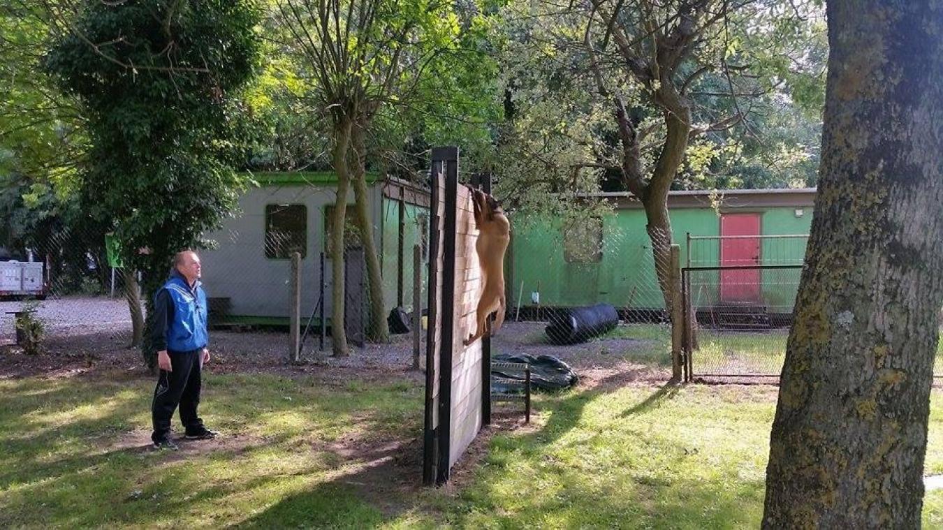 Pour l'association, nouvellement dissoute, il est impossible financièrement d'enlever les bungalows.