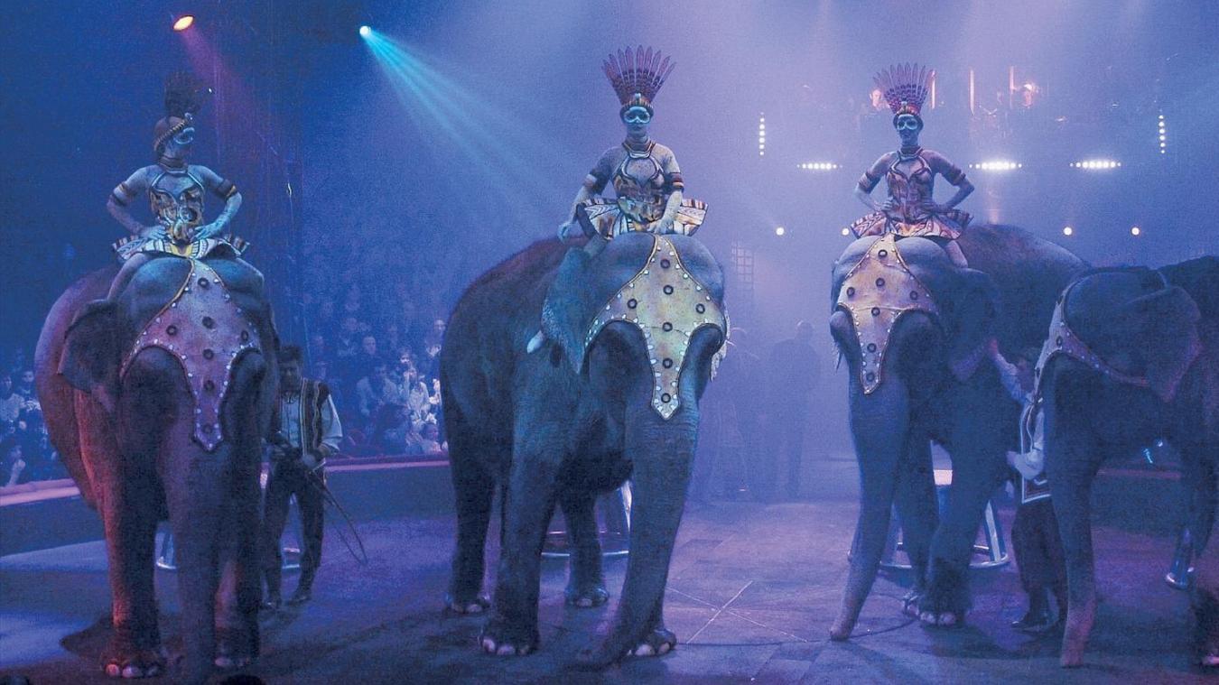 La mairie s'associe à l'association 30 Millions d'Amis pour interdire les animaux sauvages dans les cirques. (Image d'illustration)