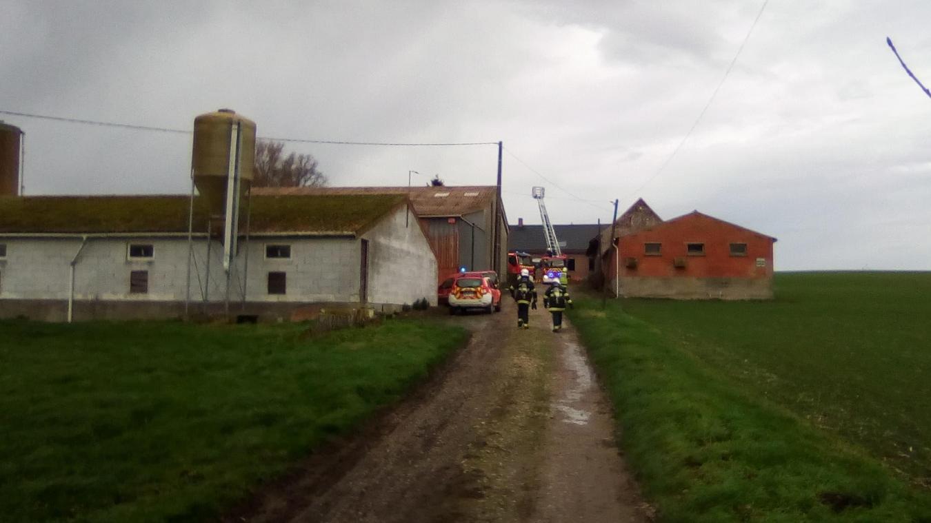 Les pompiers de Steenvoorde, Cassel et Hazebrouck sont rapidement venus à bout des flammes.