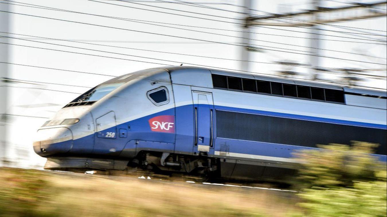 Le train en partance pour Lille a connu un souci de voie.