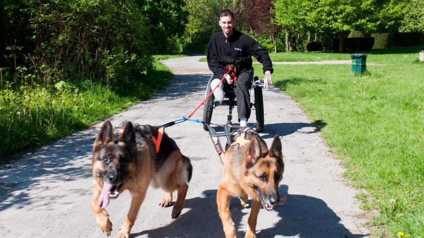 Mickaël a commencé le canicross en fauteuil il y a bientôt deux ans.