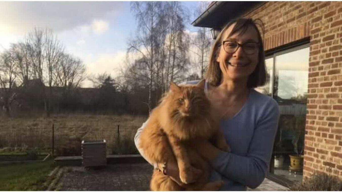Béthune : le chat Caramel rentre chez lui par Blablacar