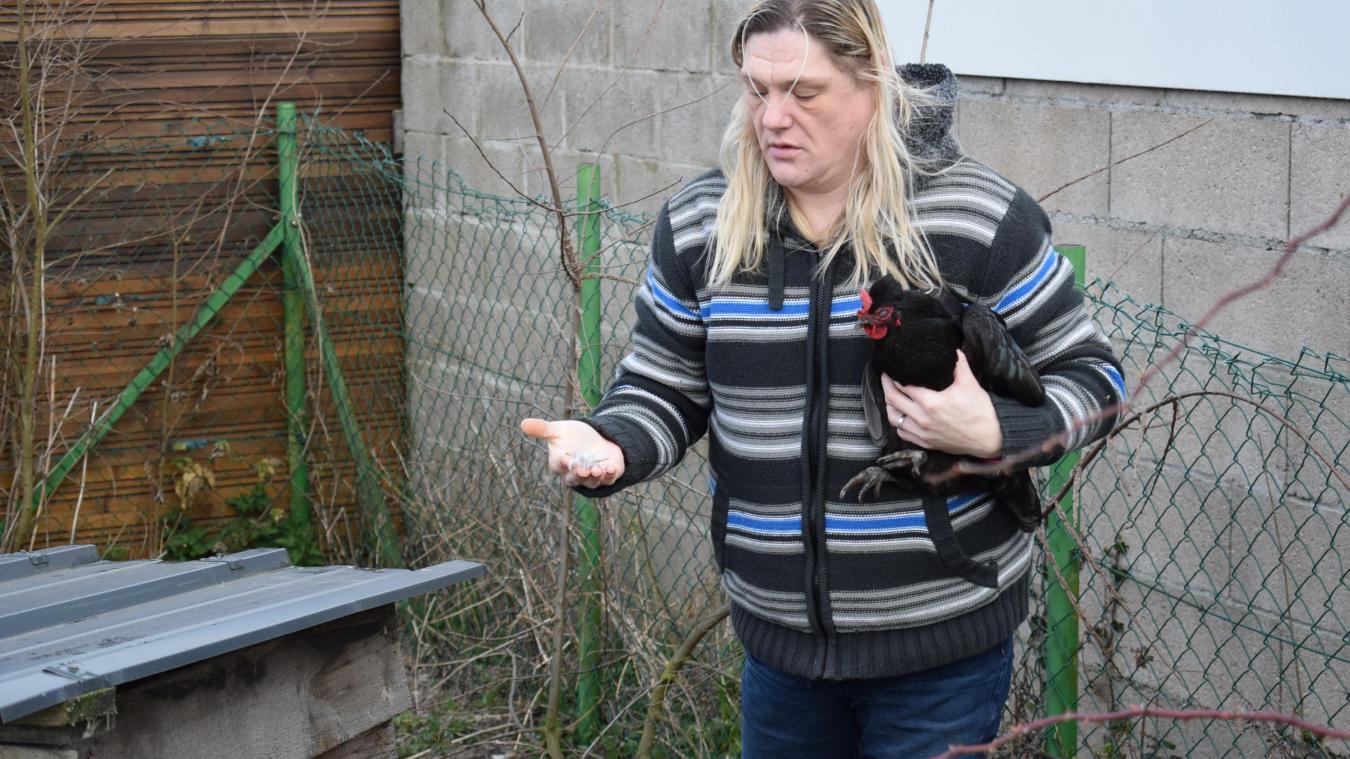 Laëtitia avec l'une de ses deux dernières poules, et des plumes de celles qui ont été retrouvées mortes, derrière le poulailler.