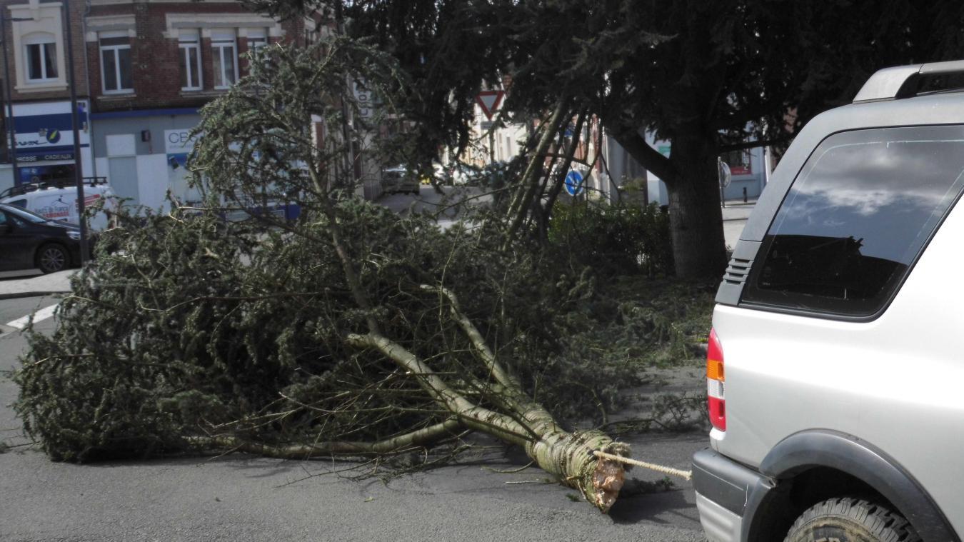 La tempête Gareth a soufflé sur l'Arrageois (photos)