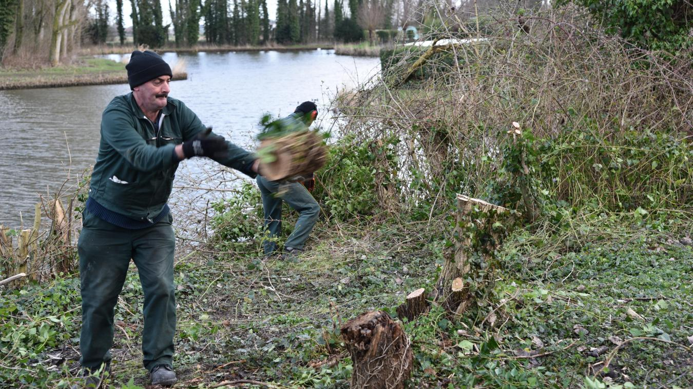 La semaine dernière, les agents étaient au travail le long de la promenade Charles-Quint. Ils ont coupé quelques arbres et élagué le sol.