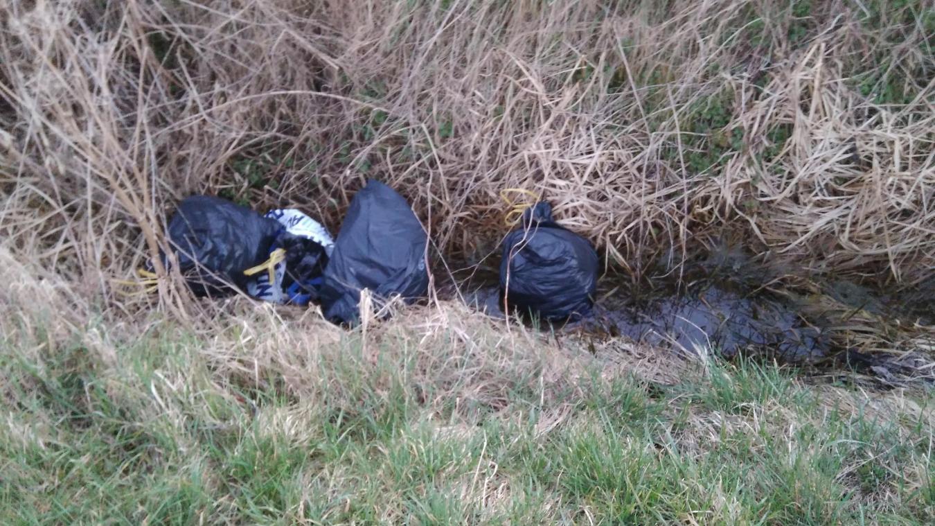 Plus de 300 tonnes de déchets sauvages ont été ramassés en 2016 par la ville de Merville.