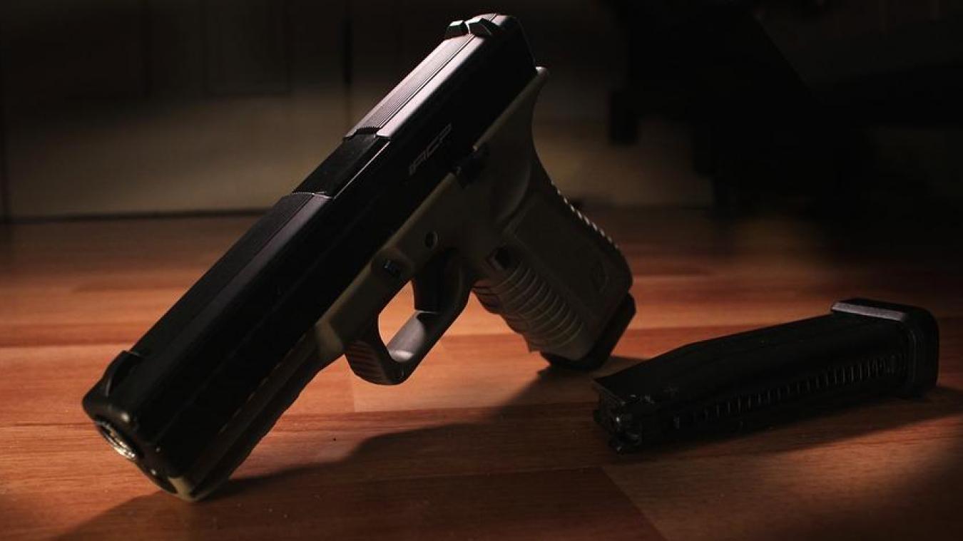 Un revolver et une carabine étaient visiblement disposés dans le mobilhome de La Gorgue où a été reçue l'inspectrice des impôts. Photo d'illustration ©Pixabay