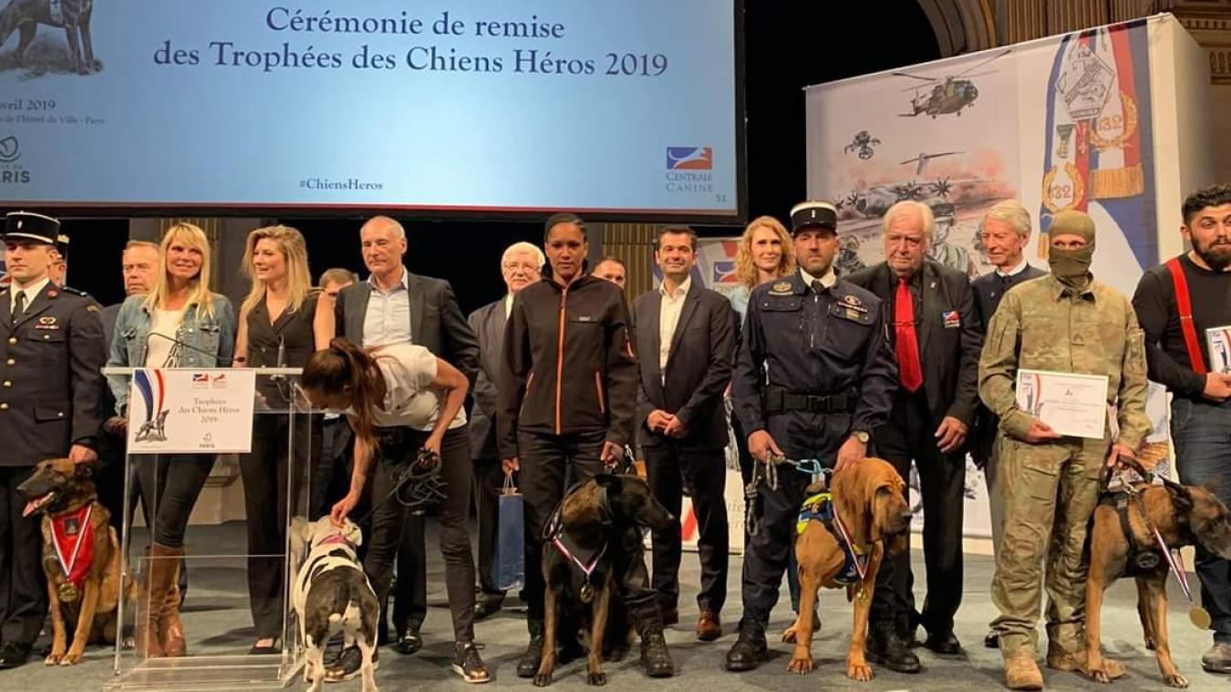 Jorek, ici au centre (troisième chien en partant de la gauche) avec Daphnée lors de la cérémonie à l'Hôtel de ville de Paris.