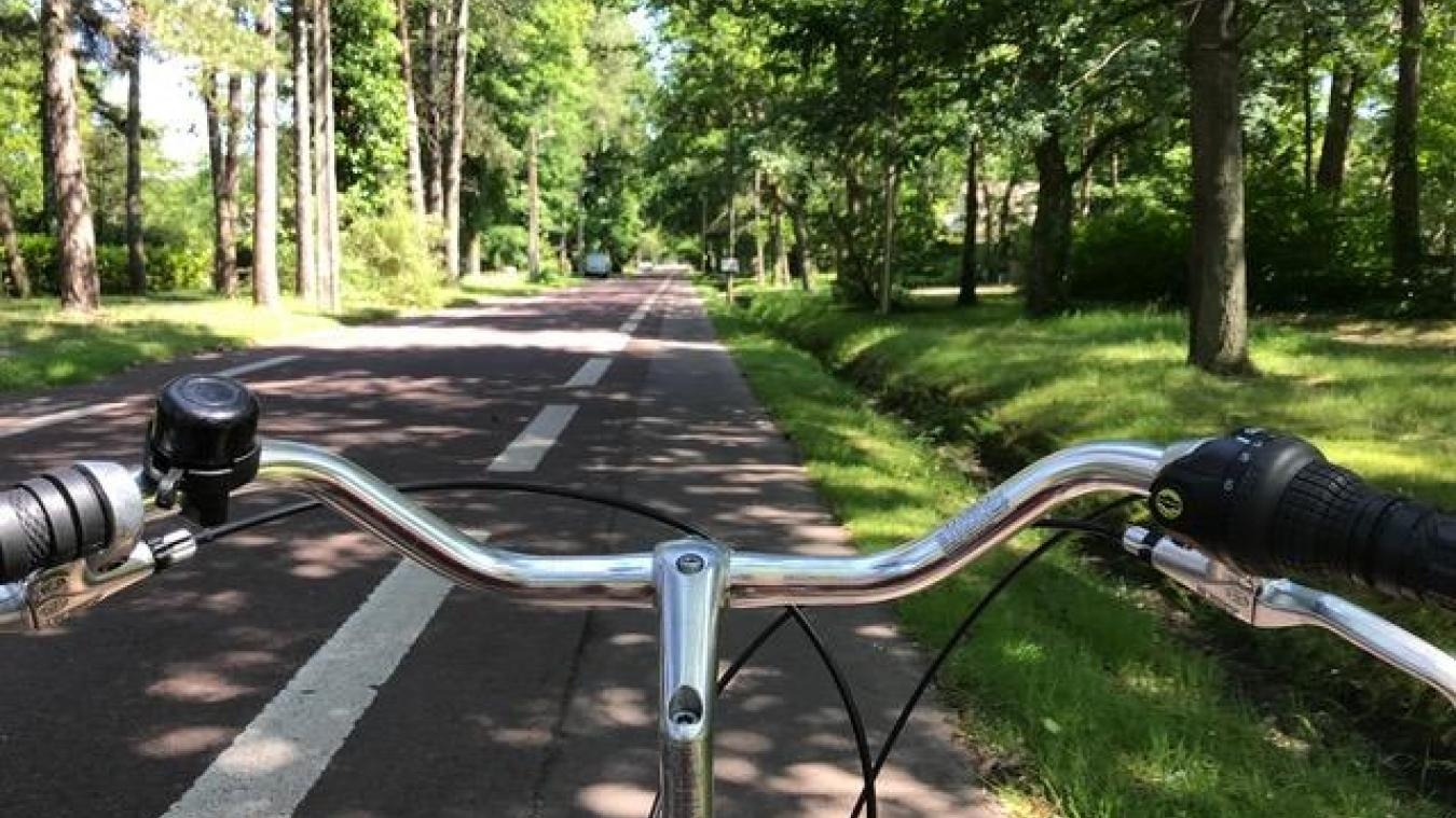 Les grands axes de la forêt du Touquet, sont équipés de bandes cyclables de part et d'autres de la route.