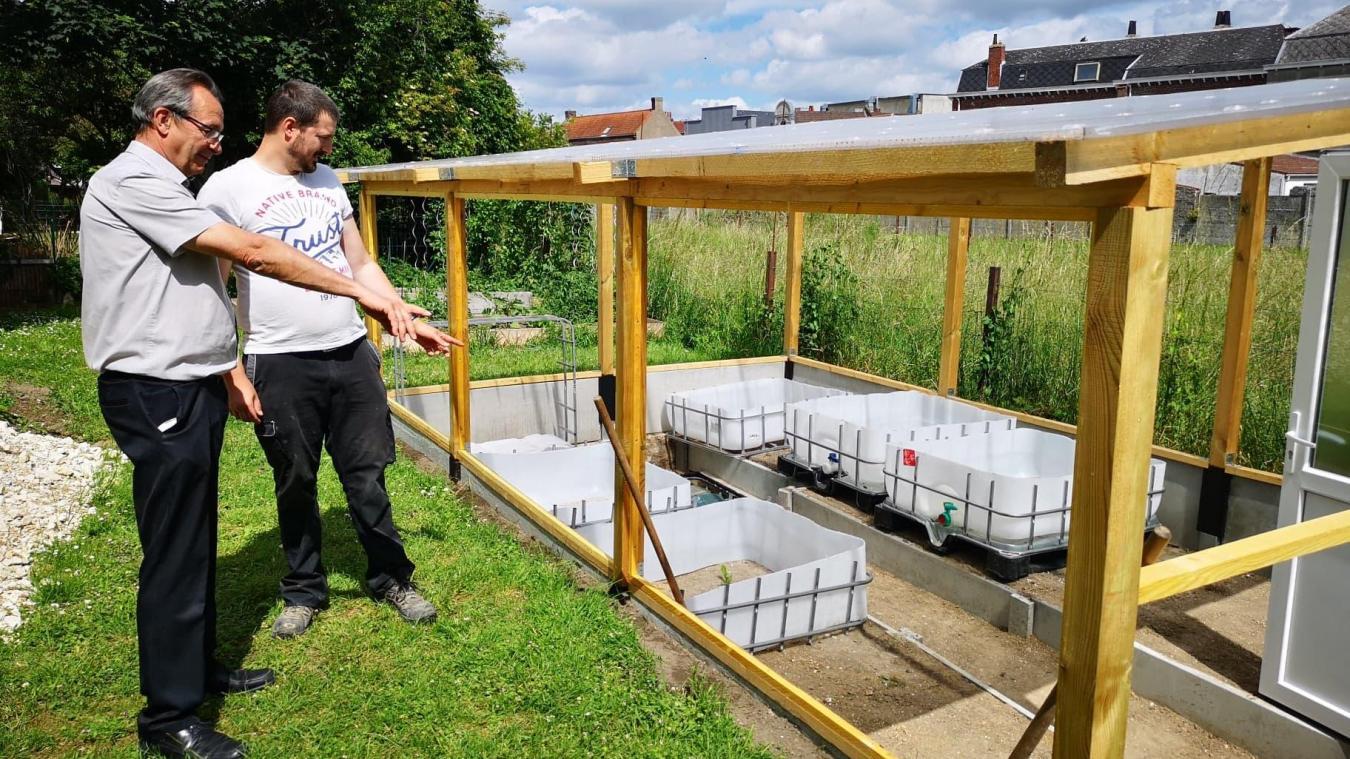 Bully-les-Mines: ils construisent une serre bioclimatique dans un jardin
