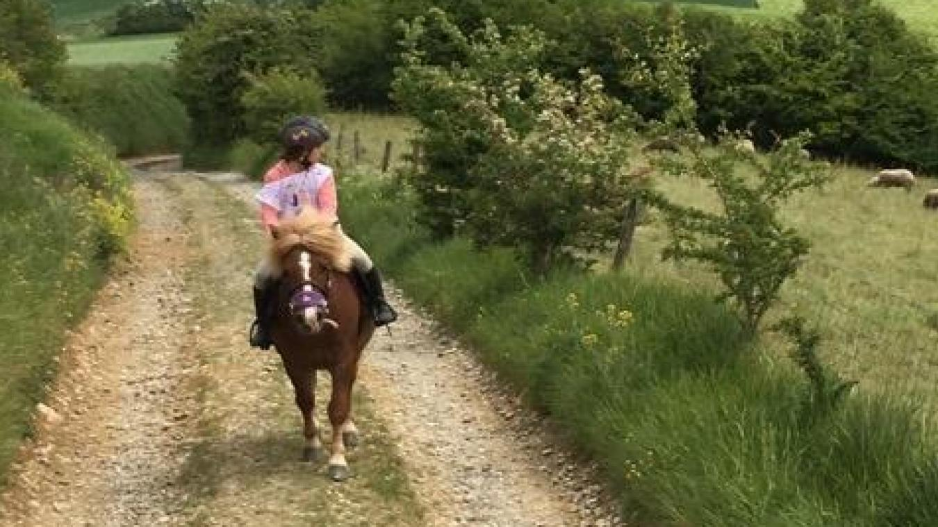 Boulonnais : bientôt des championnats de France pour Lucie et son poney