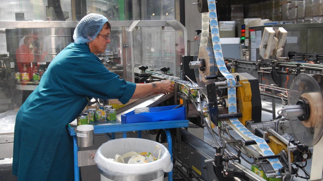 L'usine Bonduelle de Renescure emploie près de 400 salariés à l'année. Un nombre qui double lors de la campagne des légumes verts d'été.