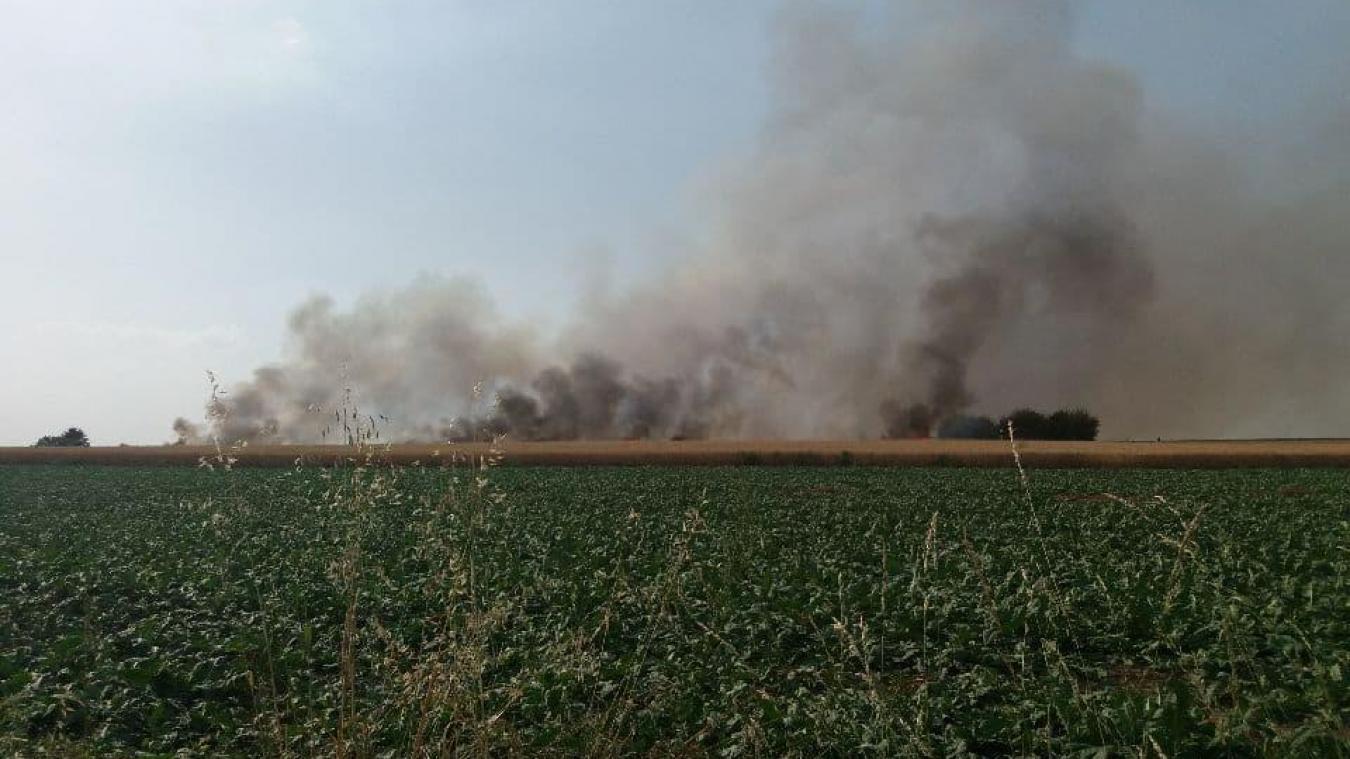Loos-en-Gohelle : un feu de s'est déclaré rue Supervielle