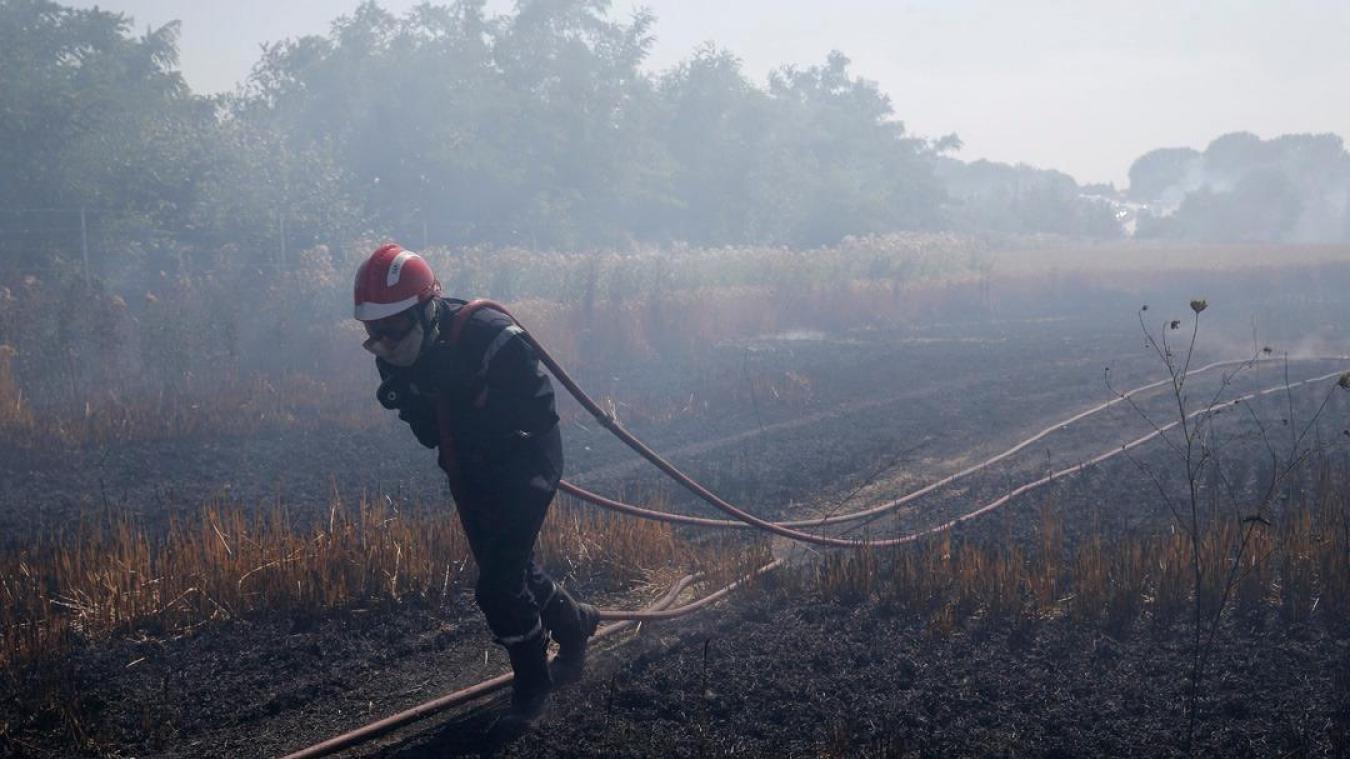 Jeudi 25 juillet, les sapeurs-pompiers du Nord sont intervenus pour 45 feux. ©Sdis59