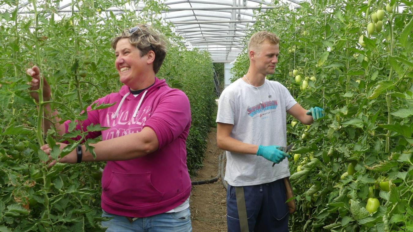 Lucie Delbarre et son saisonnier, Aubin Sarvaiva, prennent soin des plantations de l'exploitation.