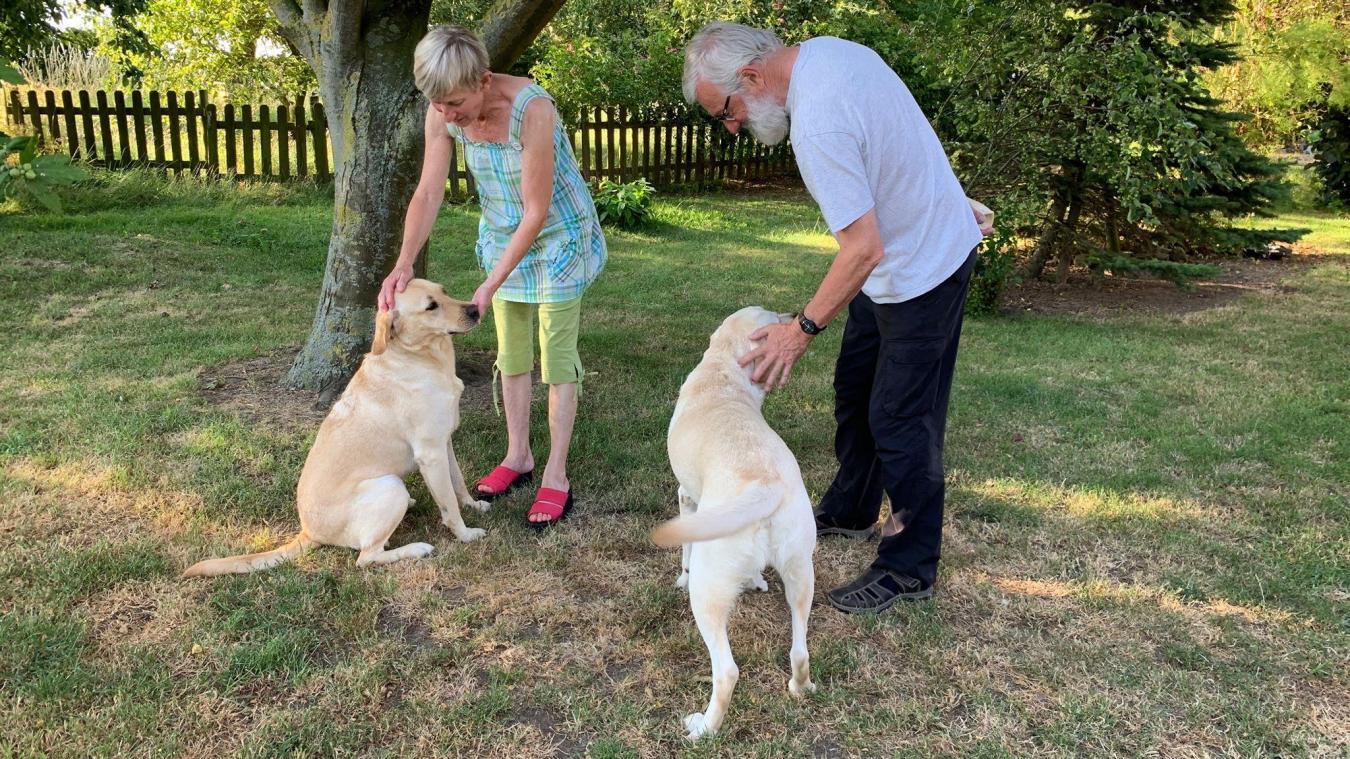 Ils éduquent des chiens guides