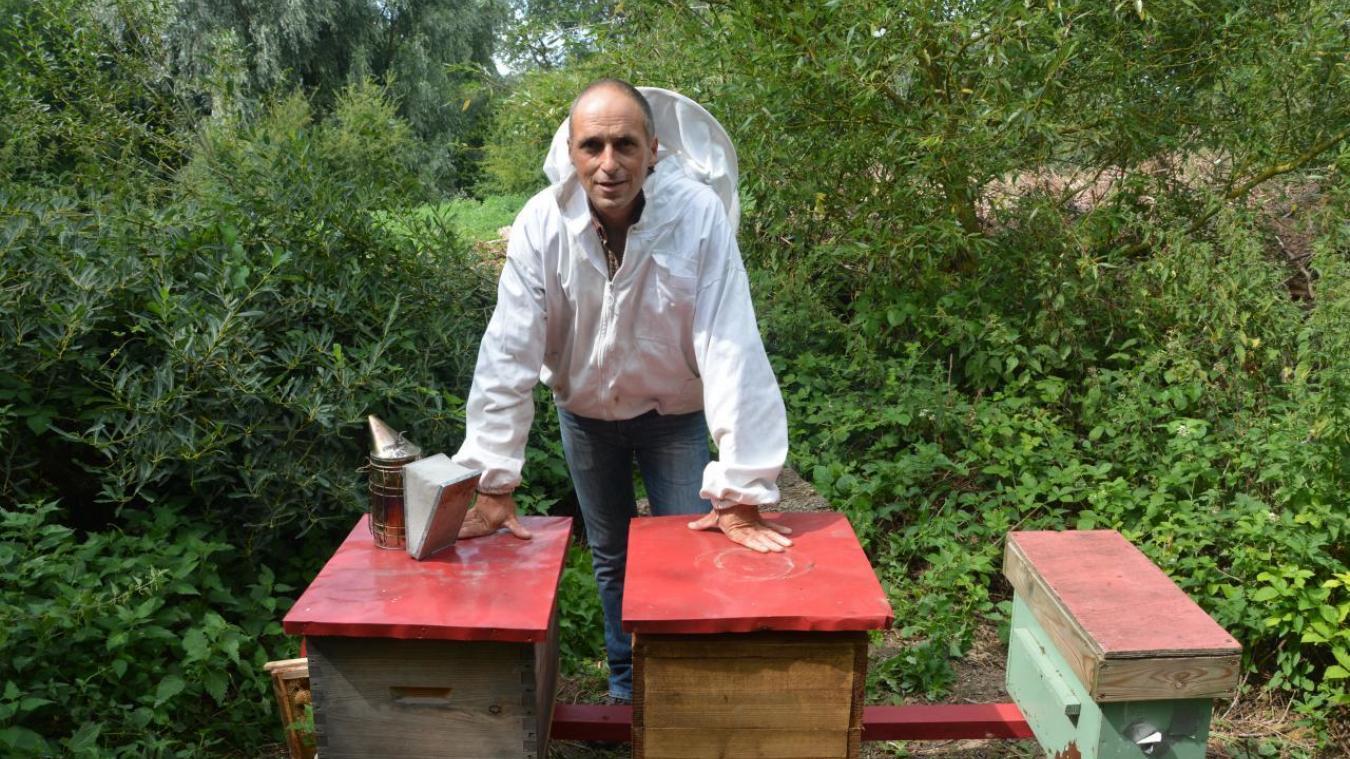 Mathieu Blatteur, 43 ans, est apiculteur à Houdain depuis trois mois.