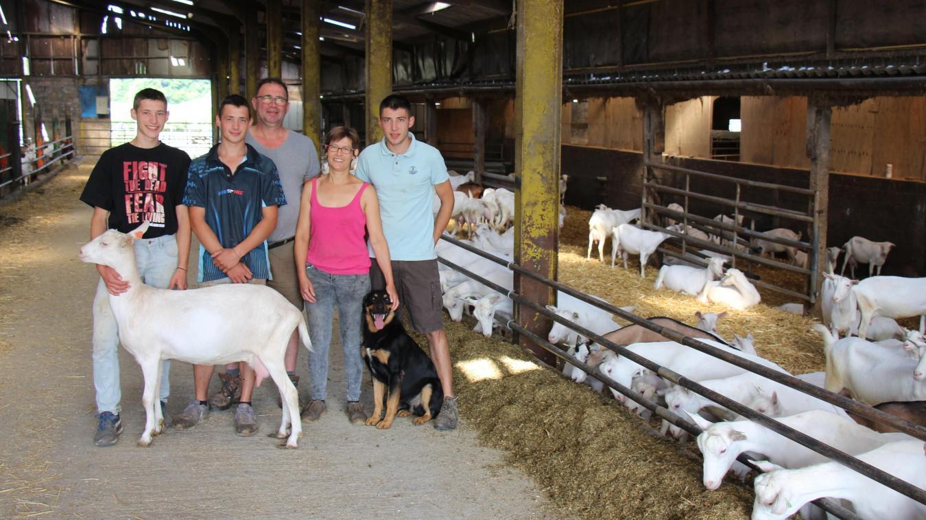 La famille Costeux s'est lancée dans l'élevage de chèvres. Elle espère en compter 1 000 d'ici deux ans.