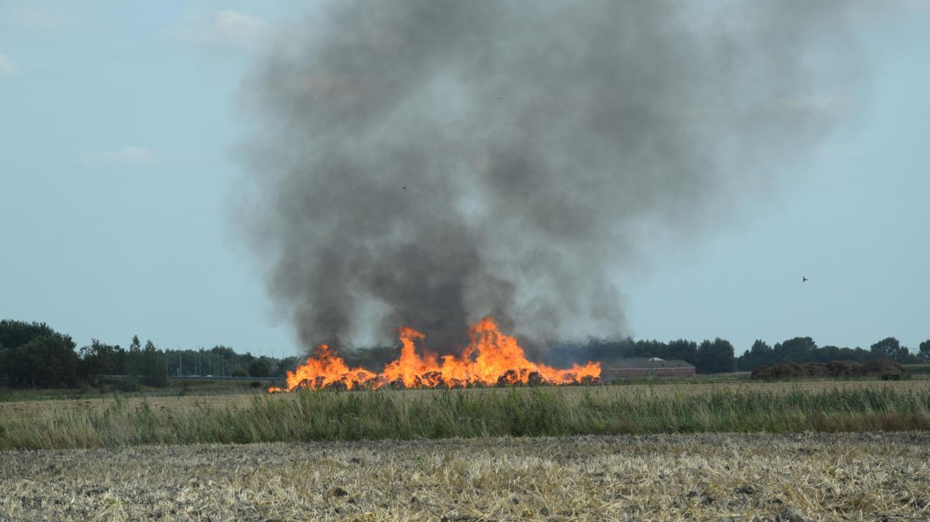 Le brûlage du lin va être effectué en urgence pour libérer les parcelles et implanter la prochaine récolte.