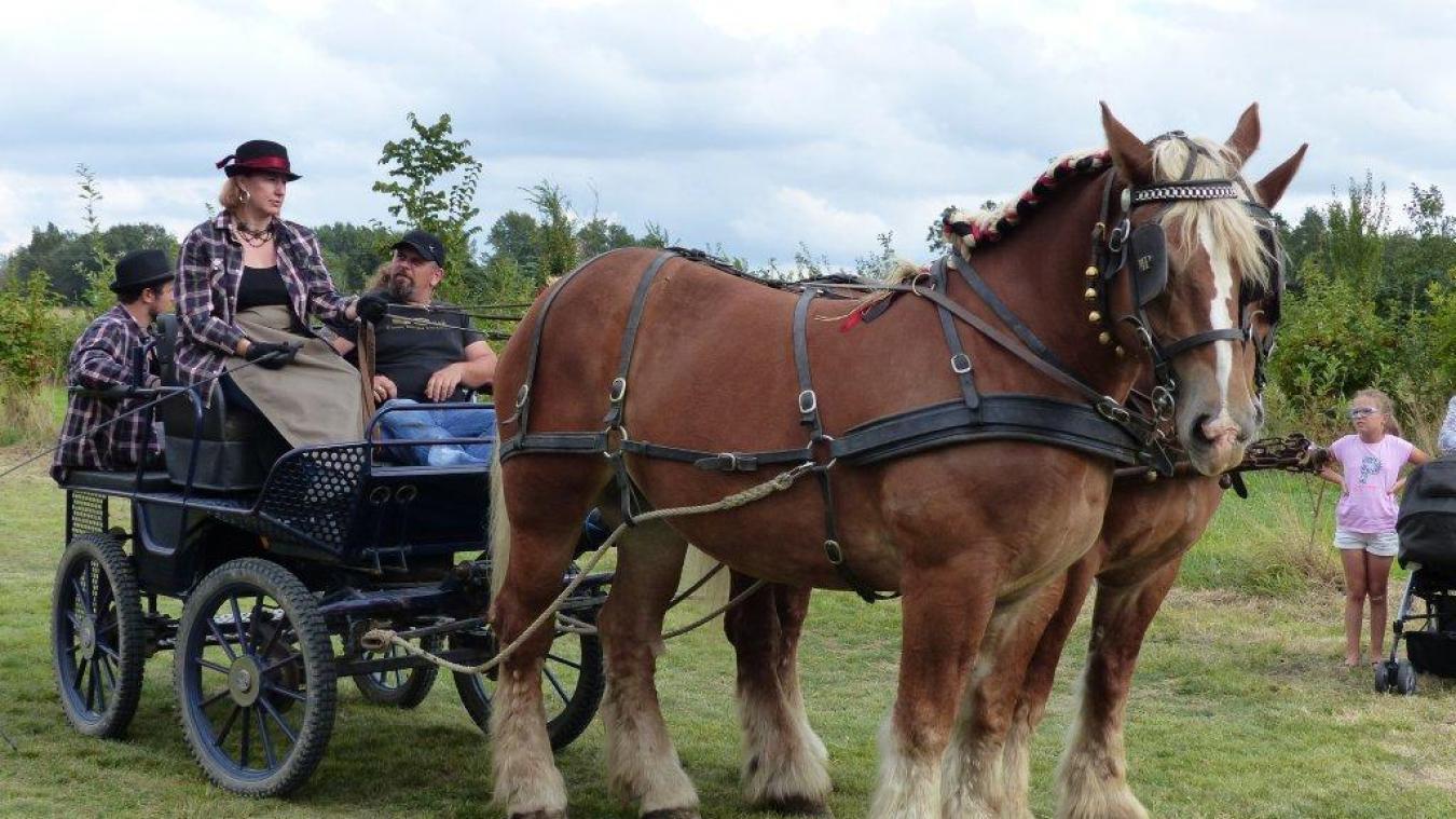 Cette année encore, Régis Denaes promet de très beaux attelages pour la fête du cheval.