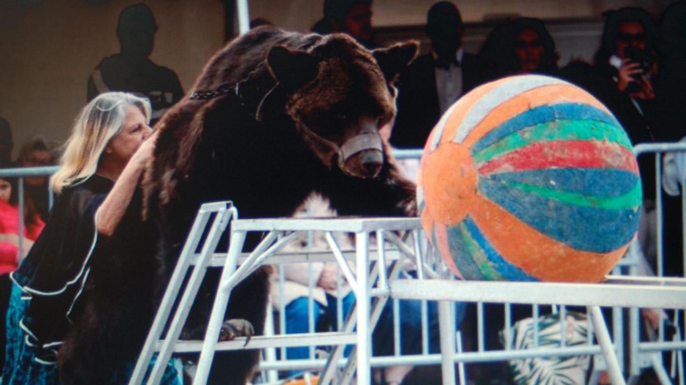 L'ours Micha en pleine représentation à la Fête du village, à Racquinghem, dimanche 8 septembre.