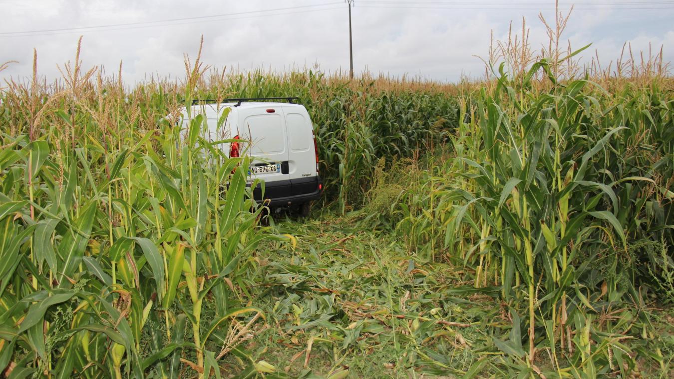 Les voitures ont terminé leur course dans un champ de maïs.