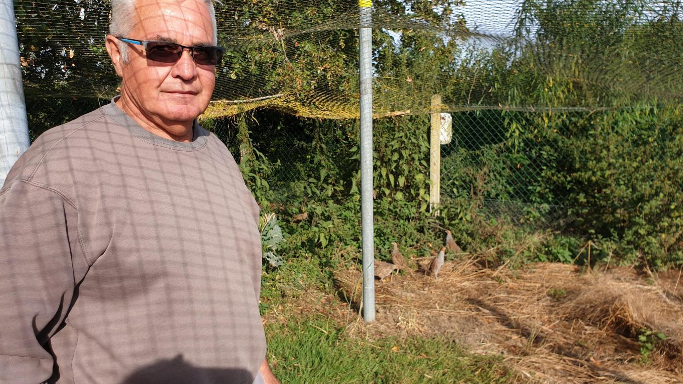 Dans sa volière, Denis élève des perdreaux qui seront chassés par la société locale.