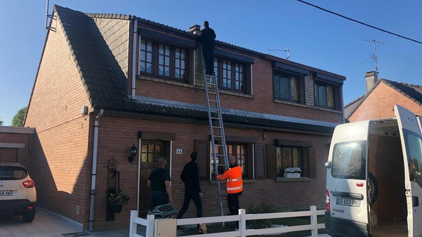 Un chat coincé sur le toit à Estaires (photos et vidéo)