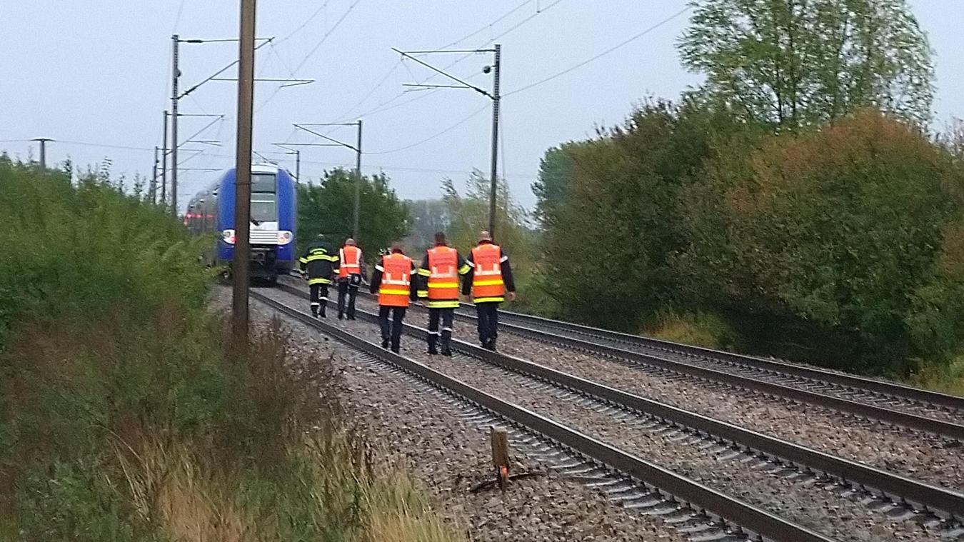 Le TER était à destination de Lille-Flandres alors qu'il a dû s'arrêter à hauteur de la commune de Merris.
