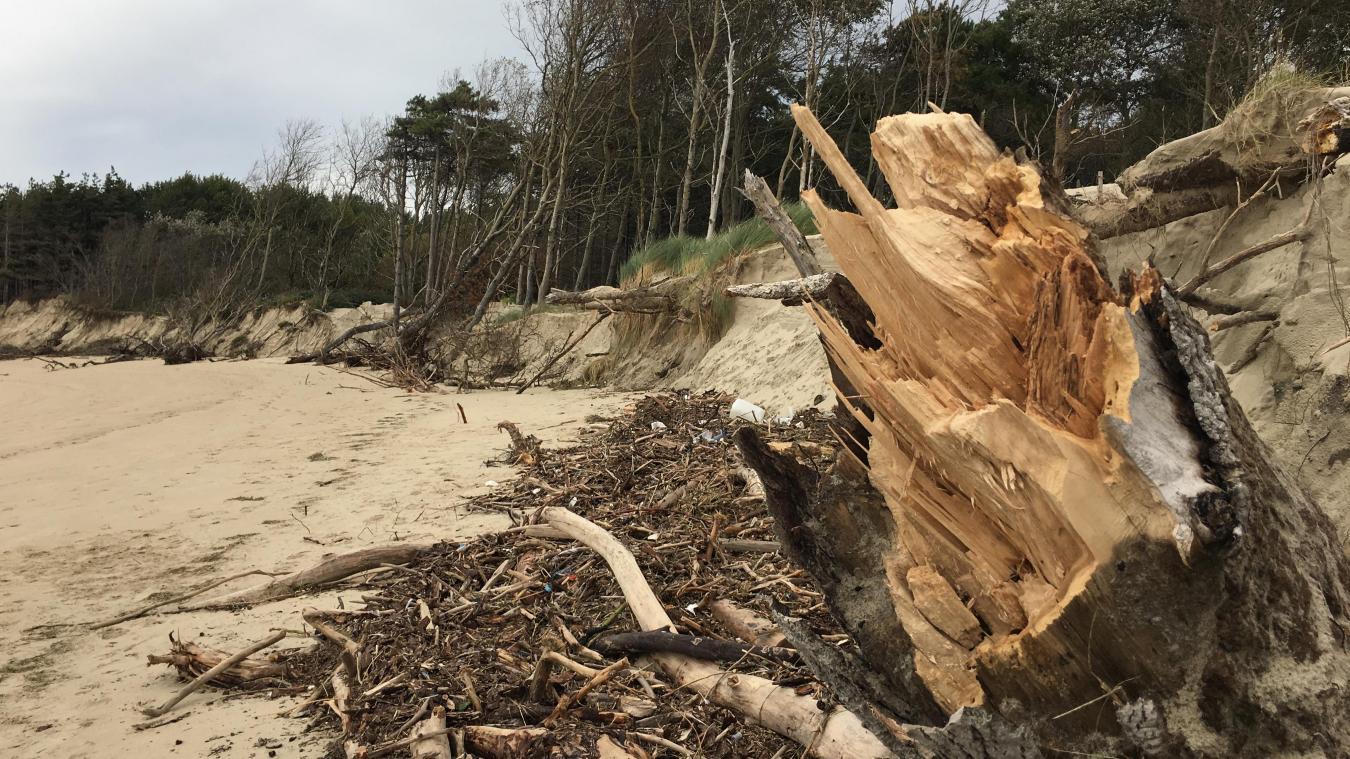 Un spectacle de désolation après les grandes marées du week-end dernier...