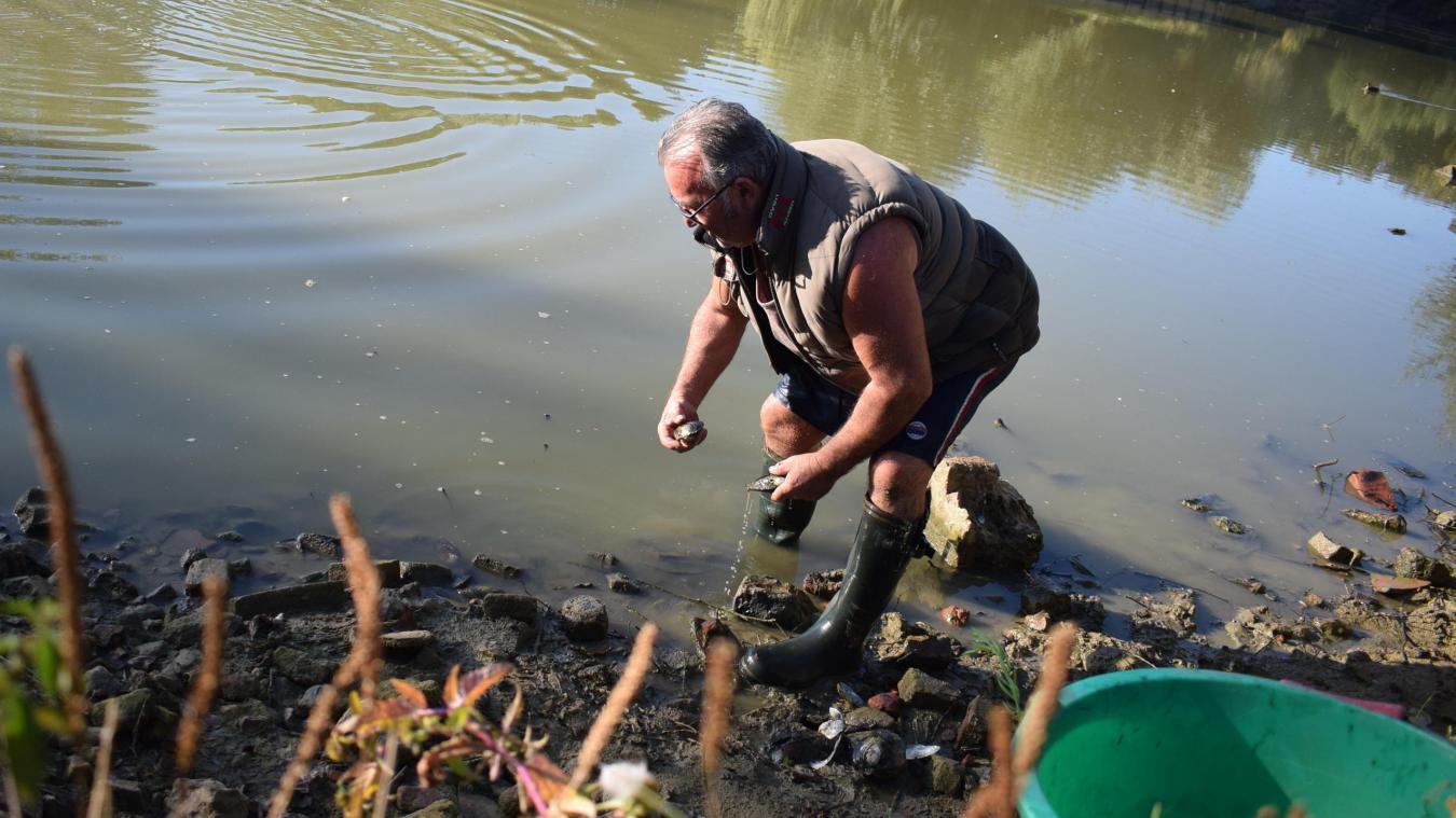 Avec son seau, Patrick ramasse les détritus qu'il trouve sur les pierres de l'étang. Il rencontre aussi des moules d'eau douce qu'il rejette à l'eau aussitôt.