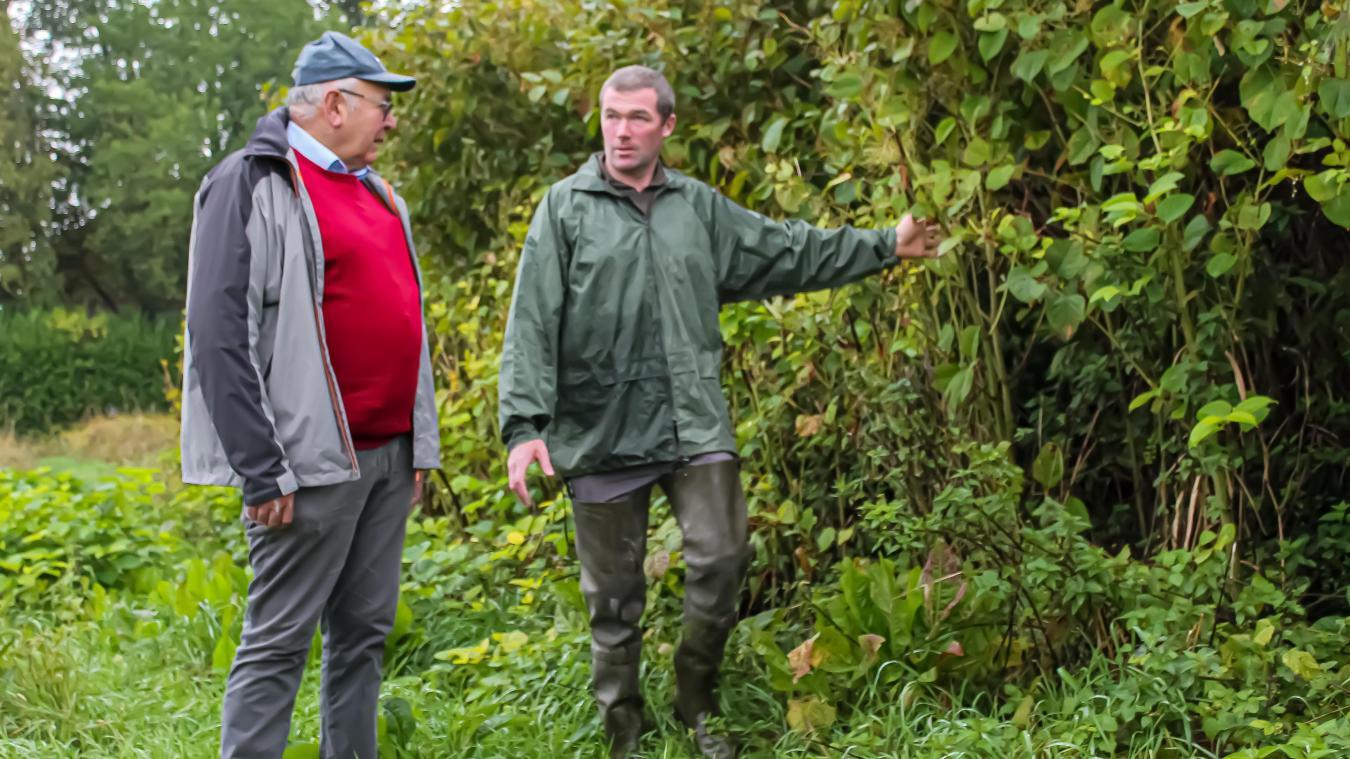 Les piégeurs repèrent les plantes invasives et les recensent. Bernard Bécuwe (à gauche) souligne que de nouvelles espèces font leur apparition.