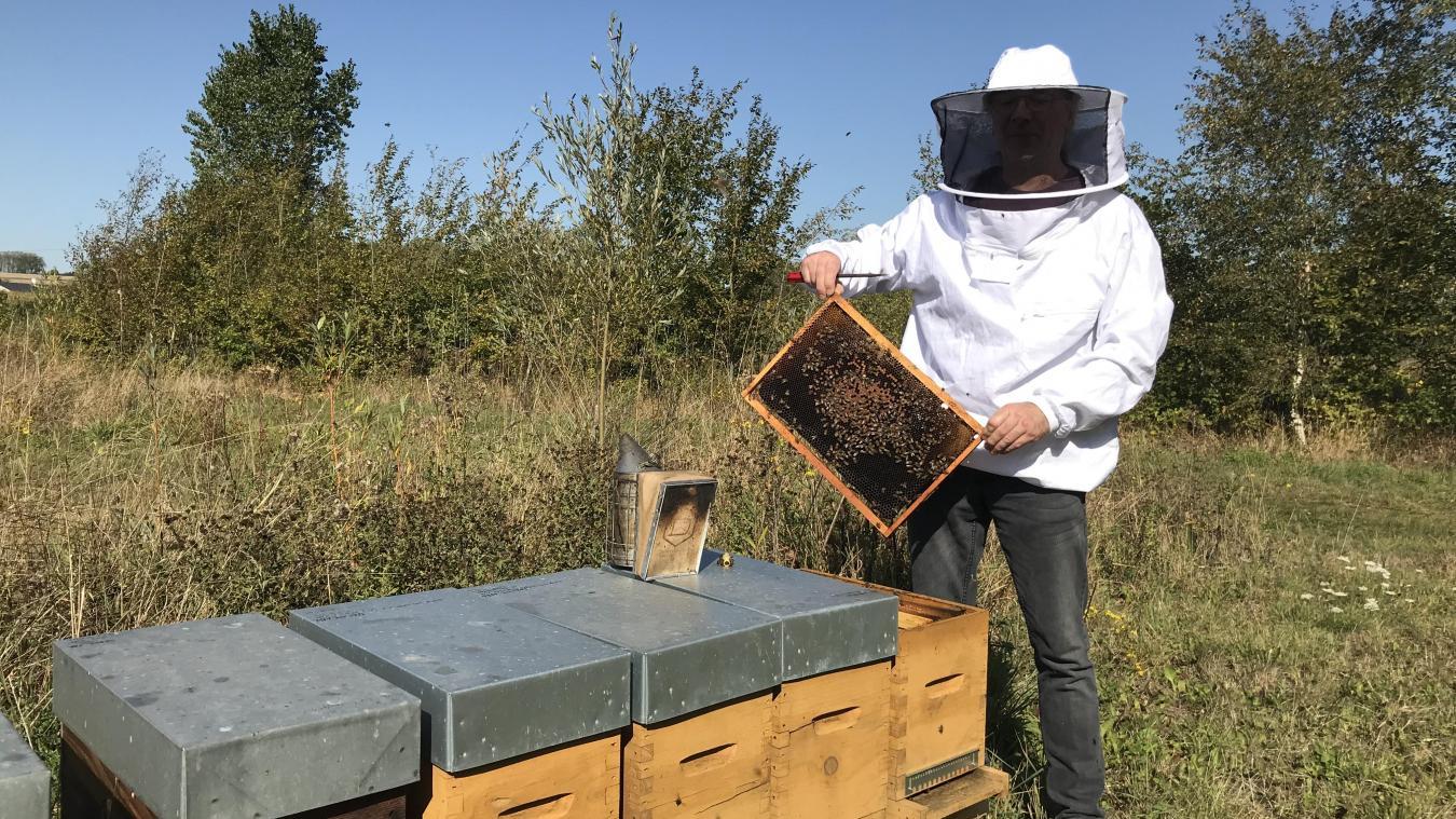Alain Collet juge la saison 2019 correcte. Il n'a pas perdu d'abeilles.
