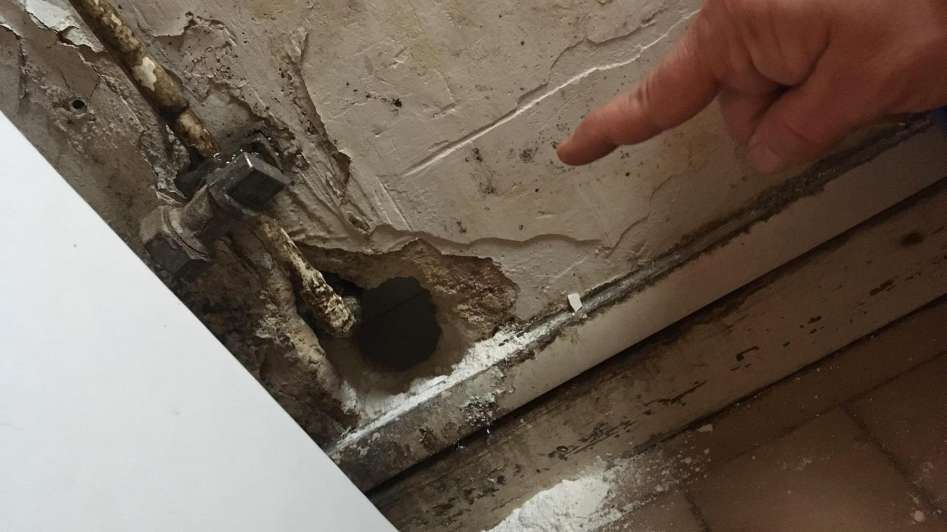 Magali indique le passage qu'ont réussi à se créer les rats qui squattent son appartement. Il permet de rallier la cuisine depuis la salle de bains.