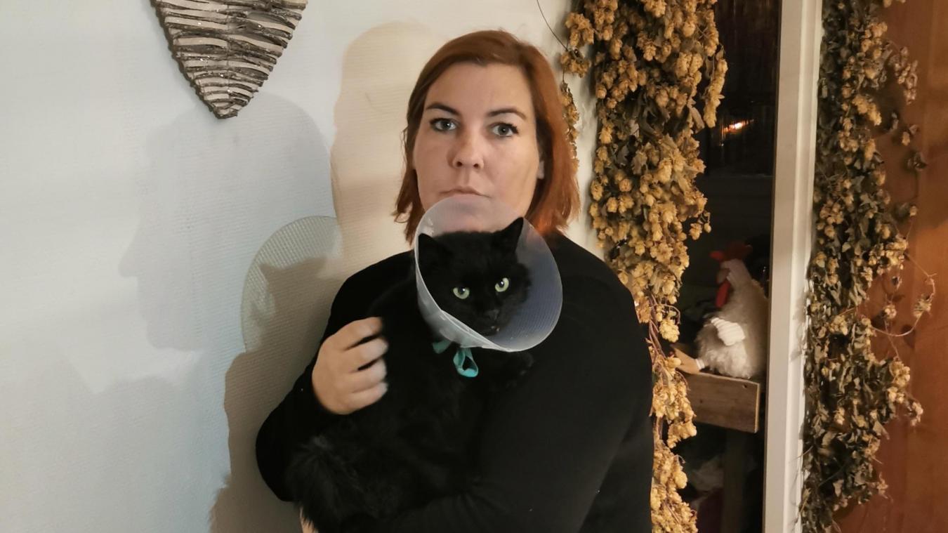 Laurie Jérôme possède trois chats. Nounours, mâle de 5 ans, a survécu à un tir de carabine, mais sa mâchoire brisée est inopérante à jamais.