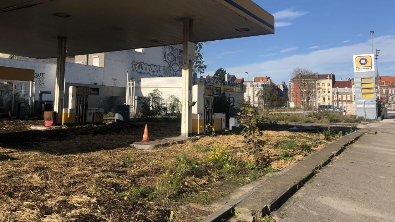 Dimanche dernier, une vingtaine de personnes ont végétalisé cette station à l'abandon.