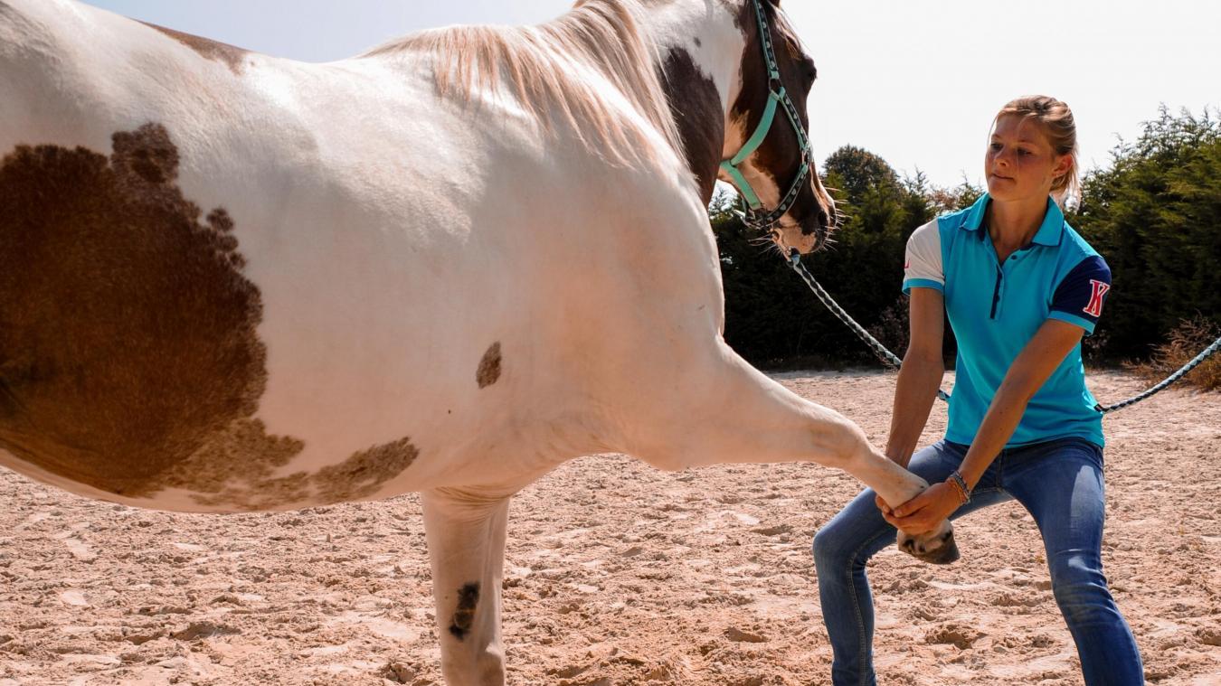 Coralie Mélard a 24 ans, et vient d'être diplômée en ostéopathie animale.