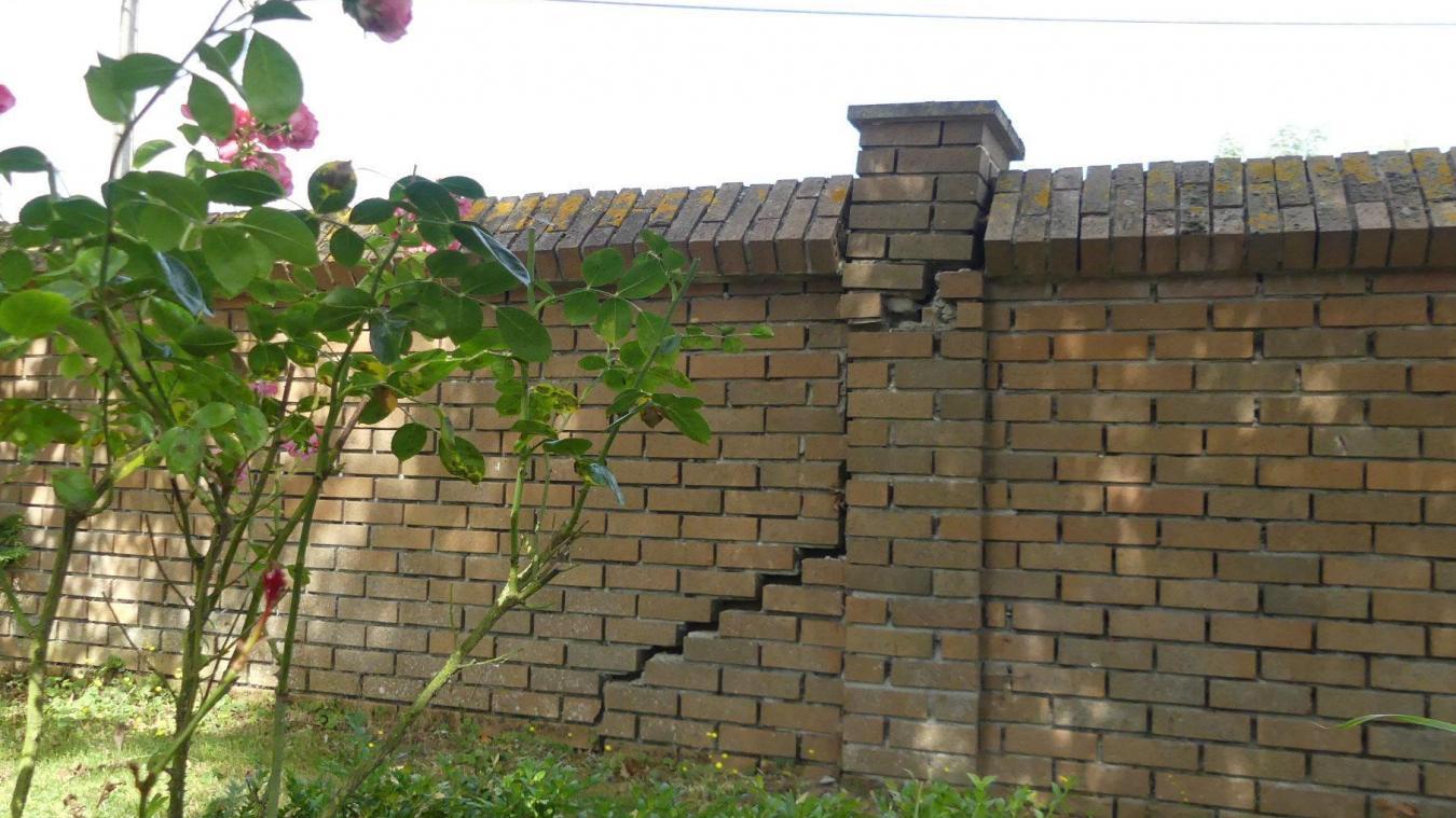 Dans la rue Basse, à Calonne-sur-la-Lys, Françoise Lippens constate année après année la dégradation d'un des murs d'enceinte de sa propriété.