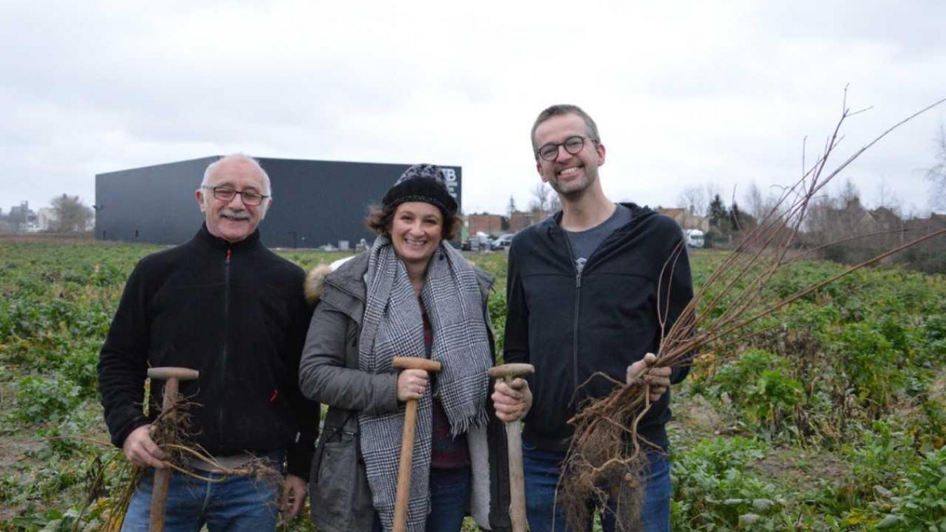 Merville : une nouvelle forêt plantée pour dépolluer