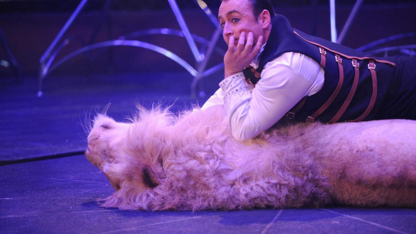 Le cirque Grüss présentera six lionnes dans son nouveau spectacle.