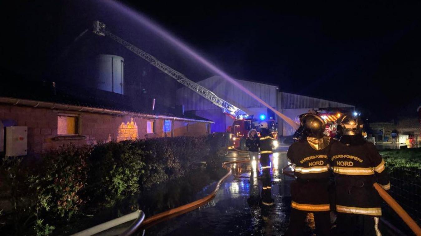 1 800 cochons périssent dans un incendie à Arnèke (actualisé)