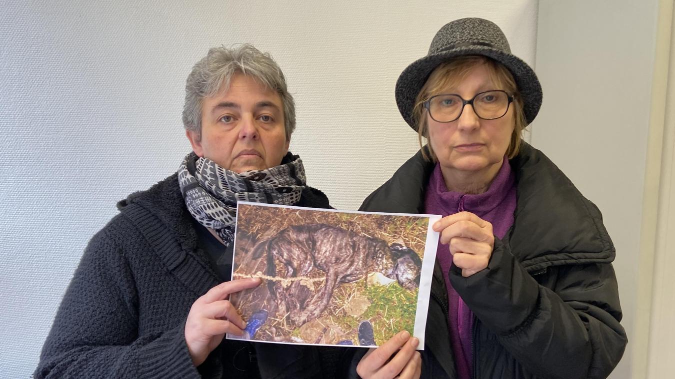 Christine et Liliane ont déposé plainte pour acte de cruauté à la gendarmerie d'Isbergues.