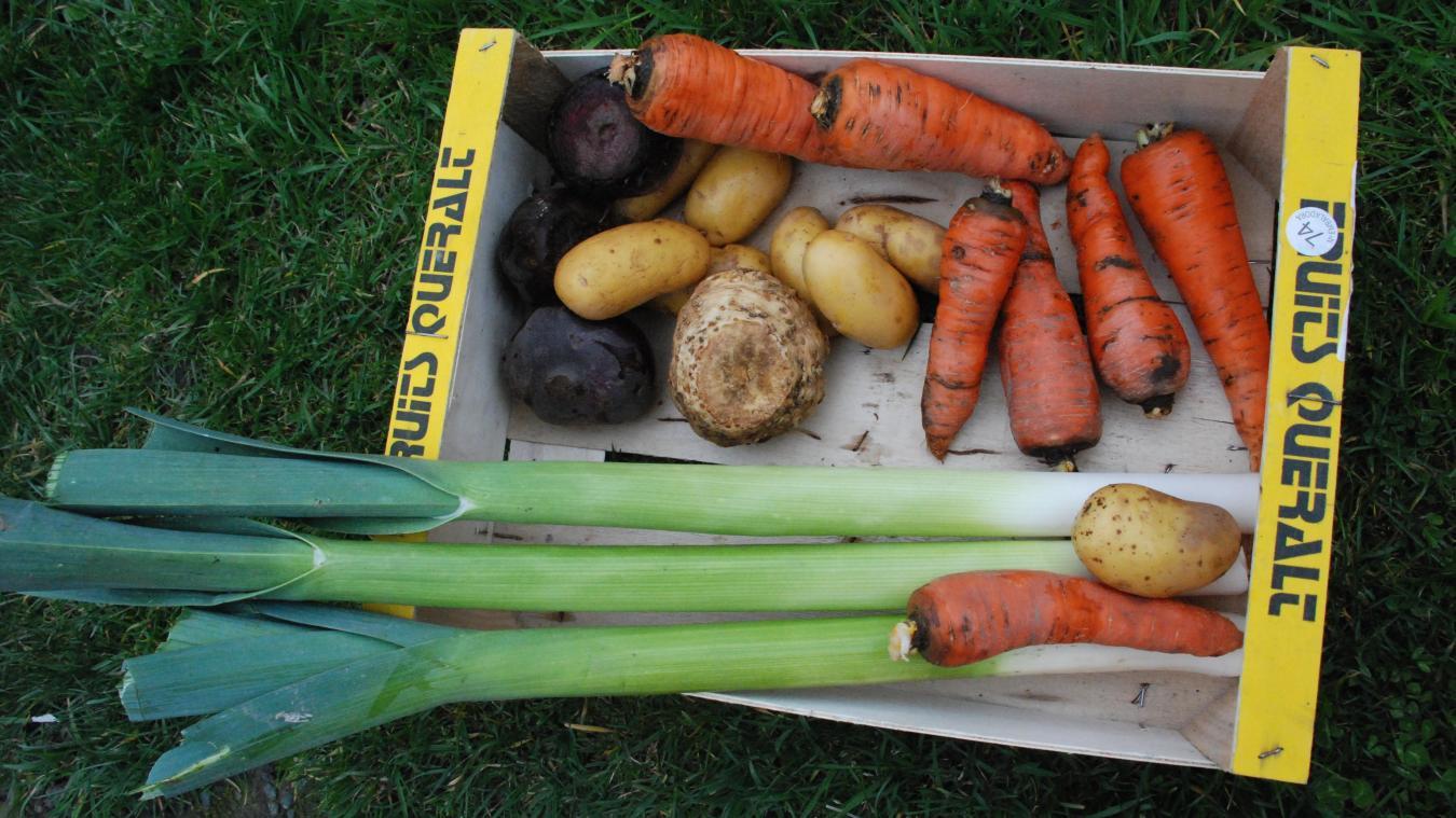 A Offin, le maire propose des paniers de légumes.