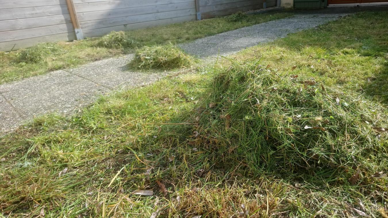 La pelouse peut être utilisée pour le compost ou le mulching par exemple.